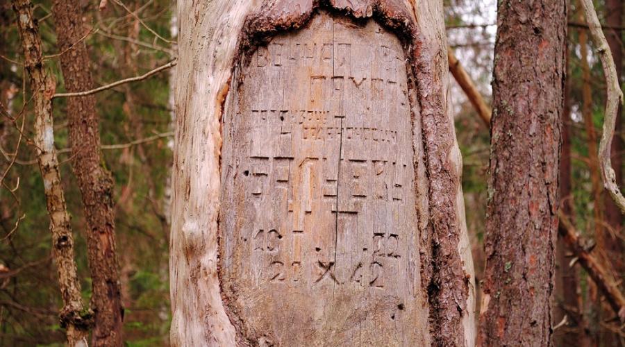 народная магия, магия развилки, развилка в магии, традиции захоронения